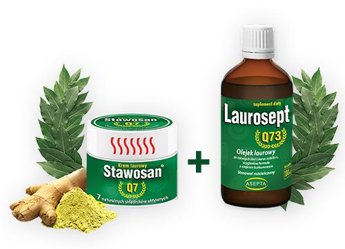 Pakiet laurowy stawo + lauro v3